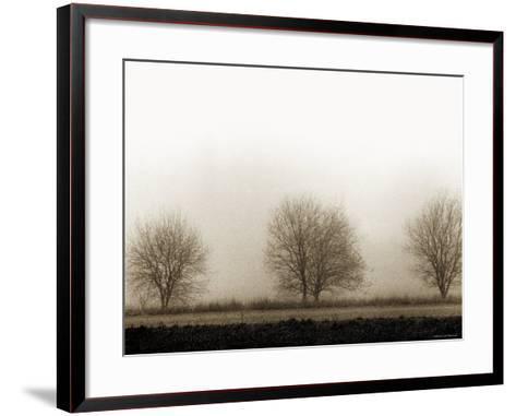 Trees-Monika Brand-Framed Art Print