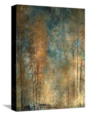 Long Ago-Lydia Marano-Stretched Canvas Print