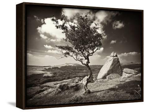 Shuffletags-David Baker-Framed Canvas Print
