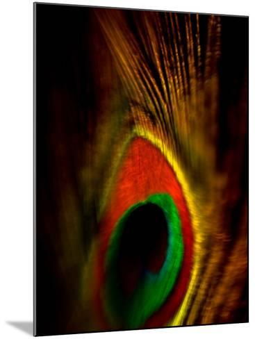 Flight Abstraction-Clive Nolan-Mounted Photographic Print