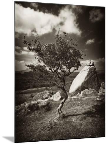 Photospace-David Baker-Mounted Photographic Print