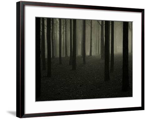 Buzztube-David Baker-Framed Art Print