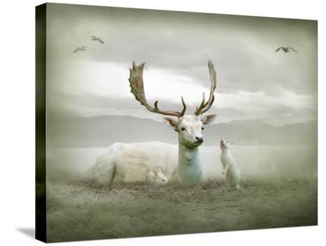 The White Stag-Lynne Davies-Stretched Canvas Print