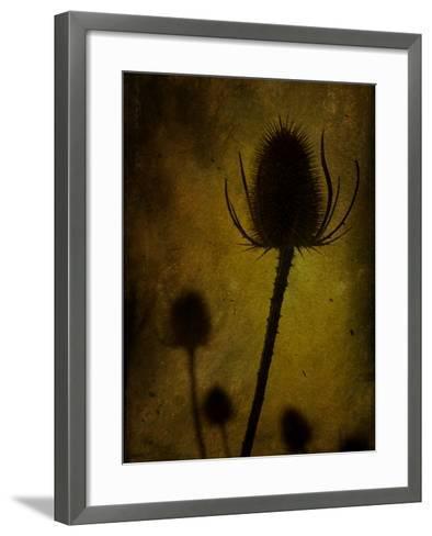 Trugen-Tim Kahane-Framed Art Print