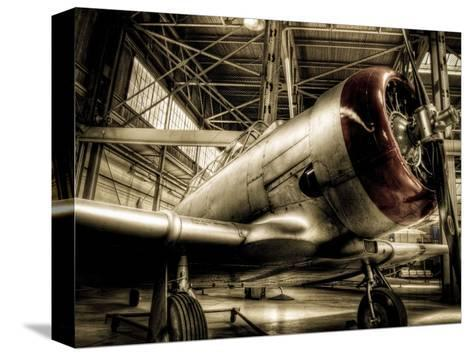 Zoom-Stephen Arens-Stretched Canvas Print