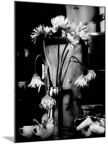 Fliptune-Sharon Wish-Mounted Photographic Print