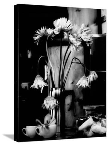 Fliptune-Sharon Wish-Stretched Canvas Print