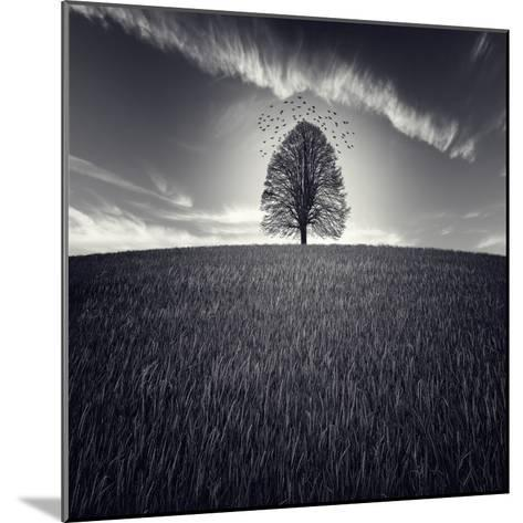 Se Va La Vida-Luis Beltran-Mounted Photographic Print