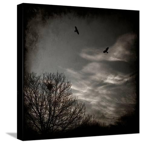 Two Birds Retum to Nest at Dusk-Luis Beltran-Stretched Canvas Print