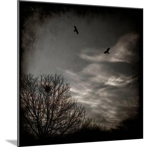 Two Birds Retum to Nest at Dusk-Luis Beltran-Mounted Photographic Print