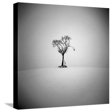 The Lonely-Craig Roberts-Stretched Canvas Print