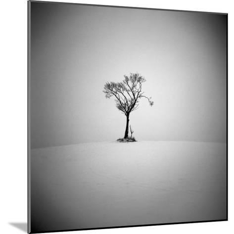 The Lonely-Craig Roberts-Mounted Photographic Print