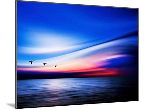 Blue Geese-Josh Adamski-Mounted Photographic Print