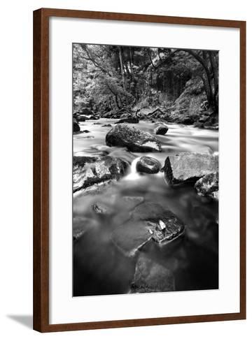 Gloss-Craig Howarth-Framed Art Print