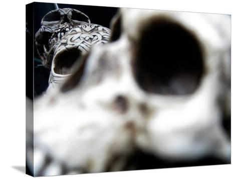 Human Skulls-Jason Martin-Stretched Canvas Print