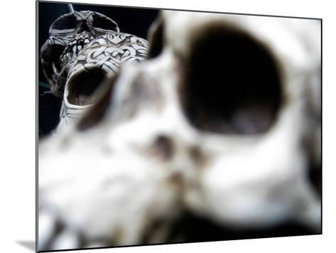 Human Skulls-Jason Martin-Mounted Photographic Print
