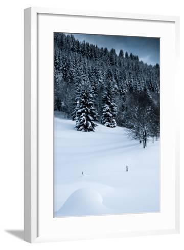 Alpine Flurry-Craig Howarth-Framed Art Print