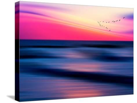 Migratory-Josh Adamski-Stretched Canvas Print