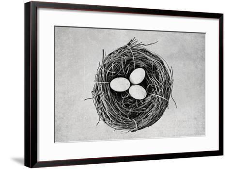 Nest-Susannah Tucker-Framed Art Print