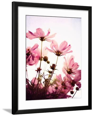 Her Secret Garden-Susannah Tucker-Framed Art Print