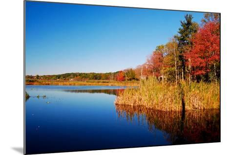 Calm Lake in New England, Connecticut, Usa-Sabine Jacobs-Mounted Photographic Print