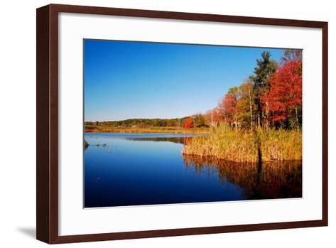 Calm Lake in New England, Connecticut, Usa-Sabine Jacobs-Framed Art Print
