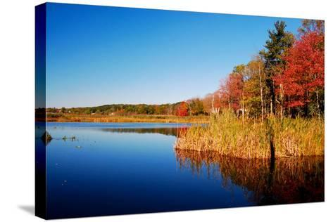 Calm Lake in New England, Connecticut, Usa-Sabine Jacobs-Stretched Canvas Print