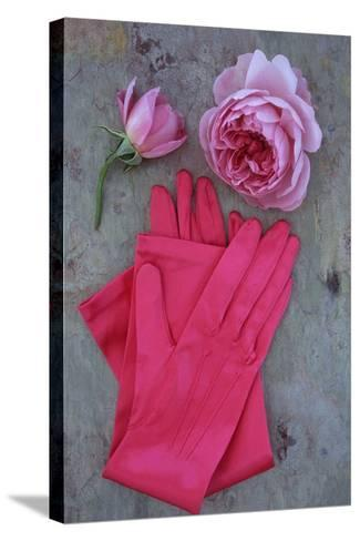Red Gloves and Rose-Den Reader-Stretched Canvas Print