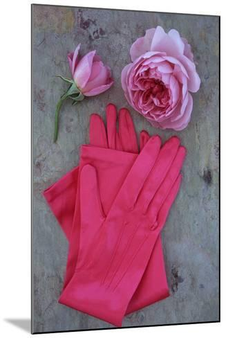 Red Gloves and Rose-Den Reader-Mounted Photographic Print