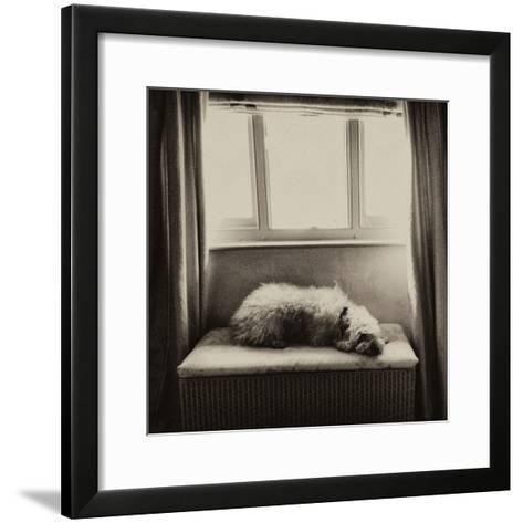 Under the Window-Tim Kahane-Framed Art Print