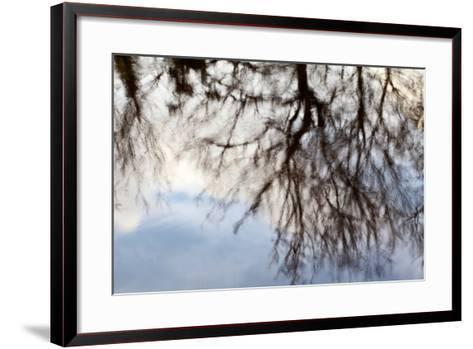 Reflections of Trees in Water-Mark Sunderland-Framed Art Print