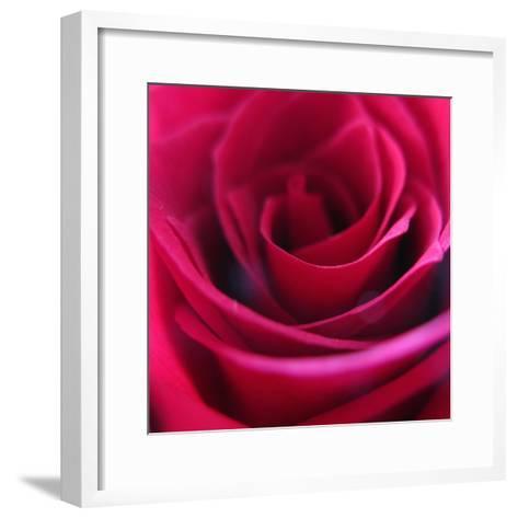 Red Rose-Carolina Hernandez-Framed Art Print