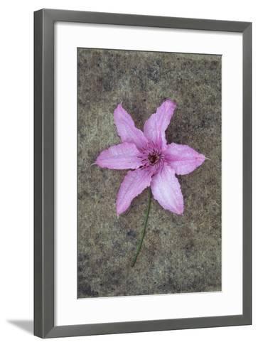 Purple Flower-Den Reader-Framed Art Print