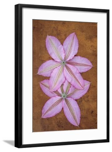 Purple Flowers-Den Reader-Framed Art Print