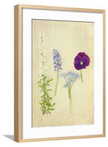 Blue and Purple Flowers-Elizabeth Urqhurt-Framed Art Print