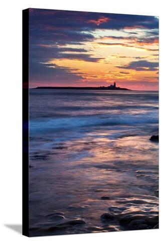 Coquet Island-Mark Sunderland-Stretched Canvas Print