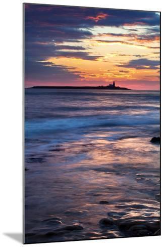 Coquet Island-Mark Sunderland-Mounted Photographic Print