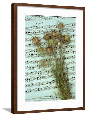Seed Heads-Den Reader-Framed Art Print