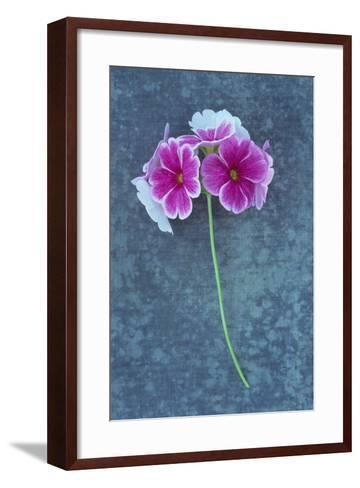 Pink Flowers-Den Reader-Framed Art Print