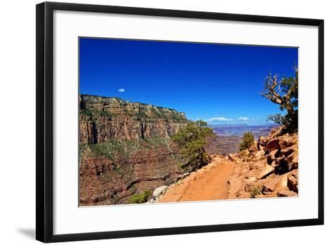 Cedar Ridge - Grand Canyon - National Park - Arizona - United States-Philippe Hugonnard-Framed Art Print