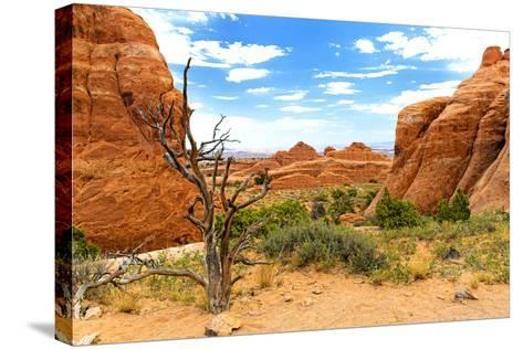 Landscape - Arches National Park - Utah - United States-Philippe Hugonnard-Stretched Canvas Print