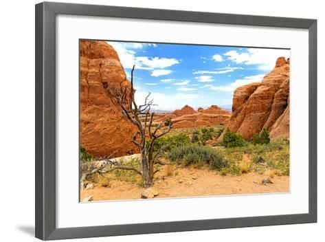 Landscape - Arches National Park - Utah - United States-Philippe Hugonnard-Framed Art Print