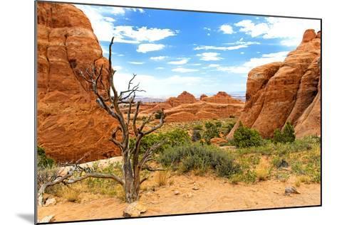 Landscape - Arches National Park - Utah - United States-Philippe Hugonnard-Mounted Photographic Print