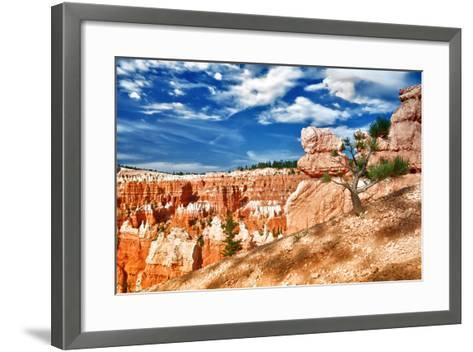 Bryce Amphitheater - Utah - Bryce Canyon National Park - United States-Philippe Hugonnard-Framed Art Print