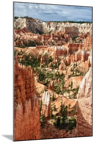 Bryce Amphitheater - Utah - Bryce Canyon National Park - United States-Philippe Hugonnard-Mounted Photographic Print