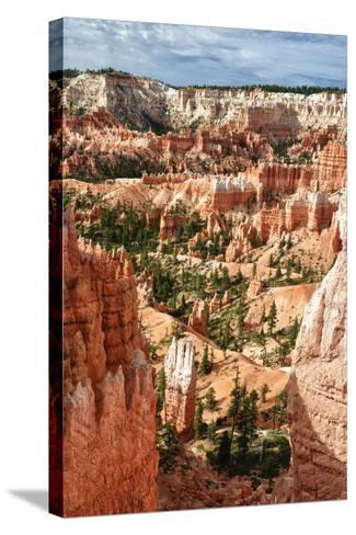 Bryce Amphitheater - Utah - Bryce Canyon National Park - United States-Philippe Hugonnard-Stretched Canvas Print