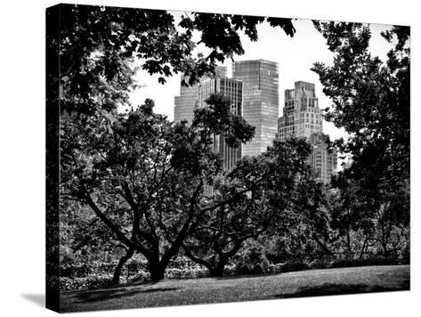 Place for Lovers in Central Park, Manhattan, New York City, Black and White Photography-Philippe Hugonnard-Stretched Canvas Print