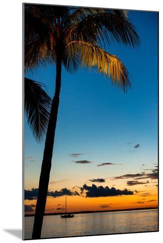 Sunset Landscape - Miami - Florida-Philippe Hugonnard-Mounted Photographic Print