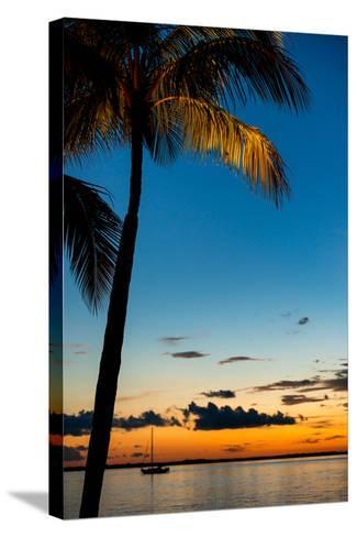Sunset Landscape - Miami - Florida-Philippe Hugonnard-Stretched Canvas Print