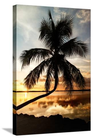 Palm Paradise at Sunset - Florida - USA-Philippe Hugonnard-Stretched Canvas Print